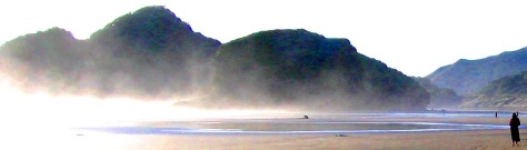 The mysterious West Coast (Bethells Beach)