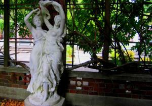 Auckland Domain Winter Garden