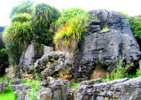 One of Waitomo's wonderful surface rock formations