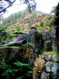Karangahake Gorge 011