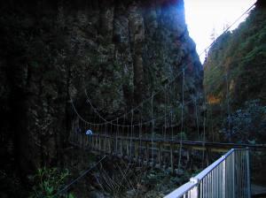 Karangahake Gorge 021