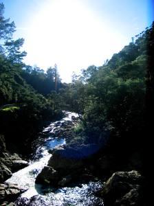 Karangahake Gorge 024