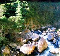 Karangahake Gorge 025