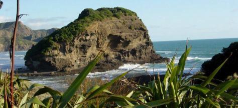438 Muriwai-Beach 040cropped