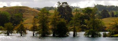 Lake McLaren