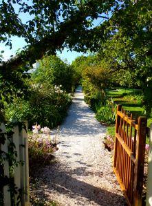 The Kemp House garden