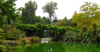 Kuirau Park1