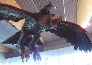 Wellington Airport Eagle Gandalf