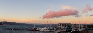 The harbour from Te Papa