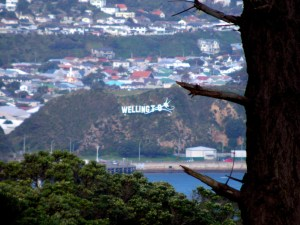The 'Windy Wellington' sign