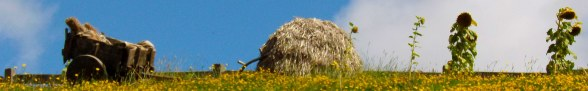 Haystack Horizon