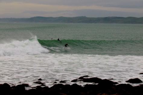 SurfingWhaleBayRaglan3