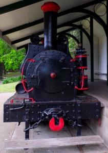 Hamilton Lake Train