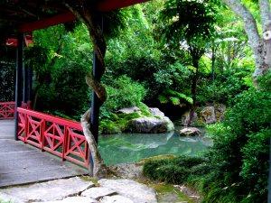 Chinese Garden, Hamilton Gardens