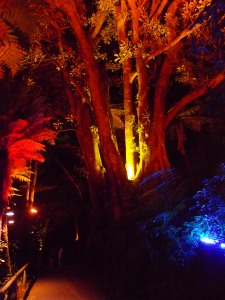 Festival of Lights, Pukekura Park, New Plymouth, Taranaki, New Zealand