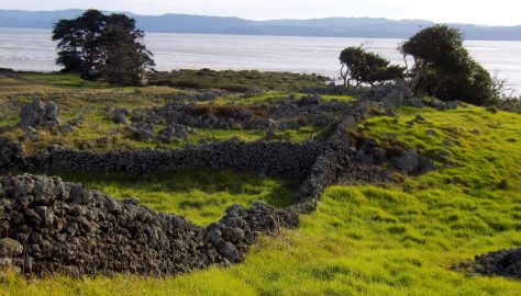 Otuataua Stonefields