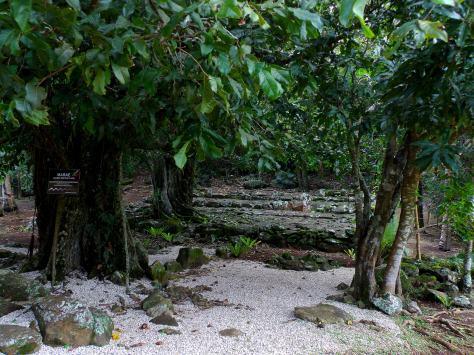 Ancient Marae