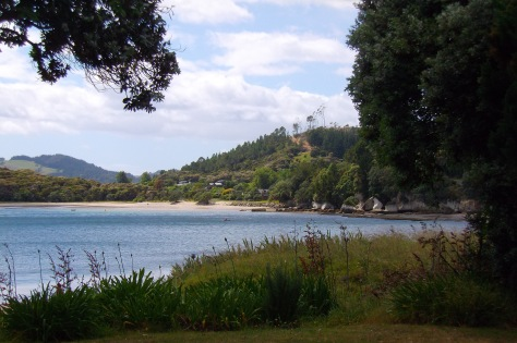 Ferry Landing, Whitianga, Coromandel, New Zealand