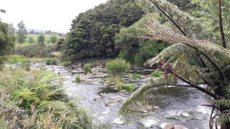 Ohinemuri River, Hauraki Rail Trail