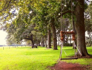 Woodlands Estate Wedding Swing