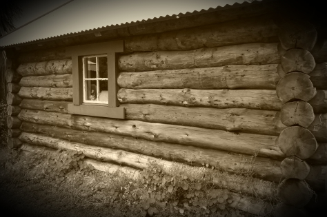 Norwegian Log Cabin