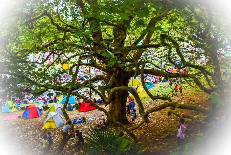kids in creepy tree