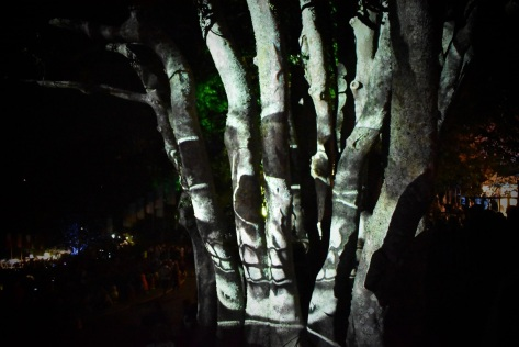 Tree Lights WOMAD
