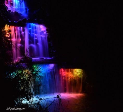 Waterfall, Pukekura Park, New Plymouth, Taranaki, New Zealand