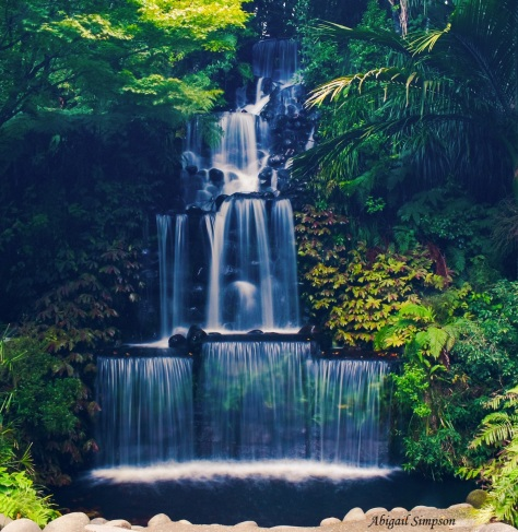 Waterfall, Pukekura Park, New Plymouth, Taranaki, New Zealand