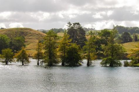 Lake McLaren by Abigail Simpson