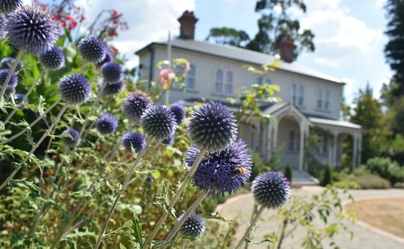 katherine mansfield garden hamilton new zealand