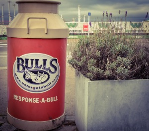 bulls bin