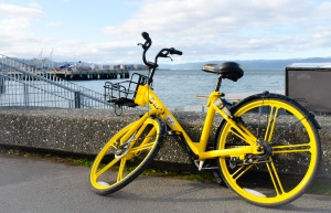 wellington harbour bicycle