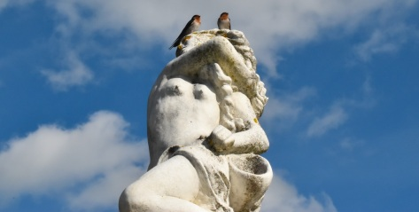 swallows statue