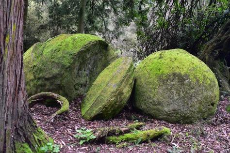 whitecliffs boulders